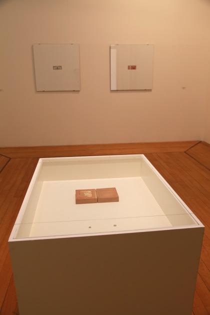 Experiências de Museu - Cildo (Web)