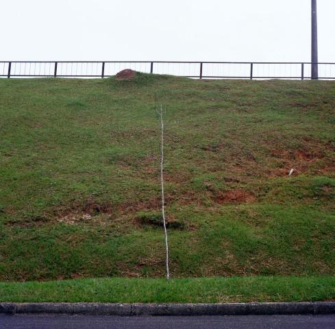 Felipe Prando, Perder de Vista #11, negativo cor, impressão digital, 90 x 90 cm, 2007.